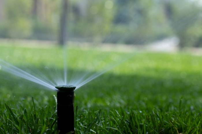 irrigated lawn with pop up sprinkler gold coast
