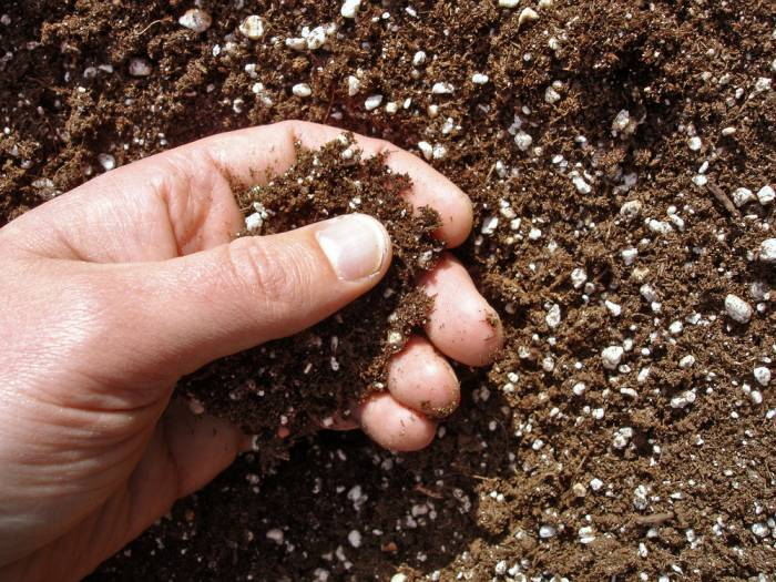 under turf soil gold coast suppliers